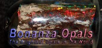 Bonanza Opal Mines